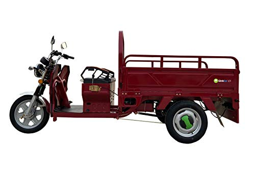 GinkGo C1 E-Cargo-Trike rot E-Lastenrad E-Lastentrike E-Lastendreirad Straßenzulassung Lastenscooter Cargo-Scooter Cargo-Runner