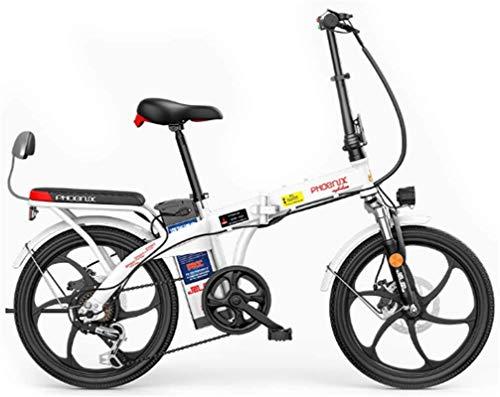 Bicicleta eléctrica de nieve, 20 pulgadas bicicleta eléctrica for los adultos, bicicleta eléctrica de 48V de trayecto, con batería extraíble, 250W de motor sin escobillas, Instrumento digital LCD, ple