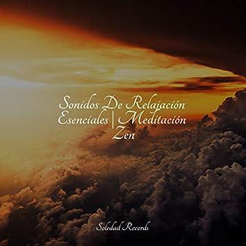 Sonidos De Relajación Esenciales | Meditación Zen