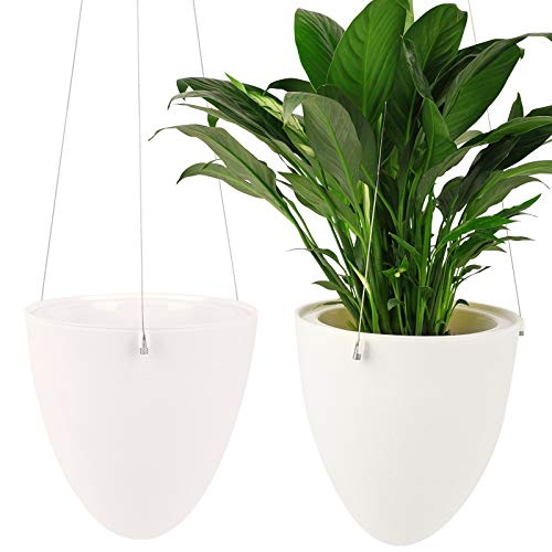 Ulikey 2Pcs Colgante de Plantas Macetas para Plantas Colgant