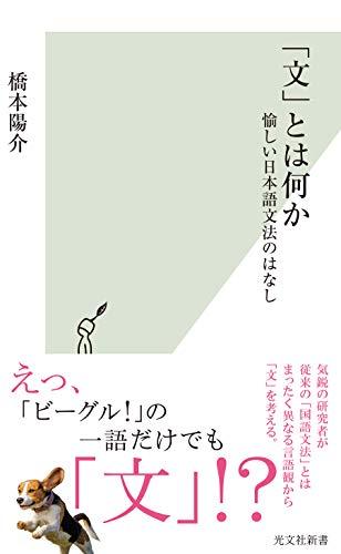 「文」とは何か~愉しい日本語文法のはなし~ (光文社新書)