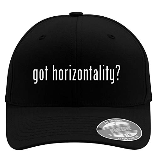 got Horizontality? - Flexfit Adult Men's Baseball Cap Hat, Black, Large/X-Large