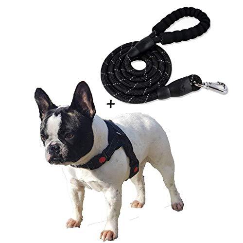 GWFVA Hond Harnas Geen Trek Voorste Hond Harnas, Handvat, Padded Puppy Trunk, Verstelbare Reflecterende Mesh, Gemakkelijk sturen, Buiten Lopen, Zwart, M