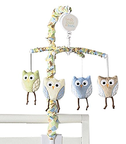 Laugh, Giggle & Smile Mod Owls Mobile