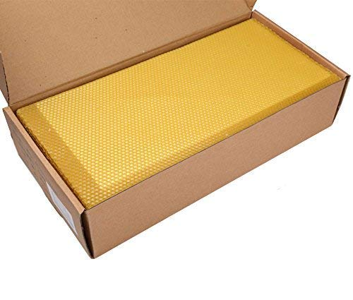 Lautechco 100% Beewax 30pcs Bee Keeping Supplies Nest Box Nest Foundation Beeswax Sheets Honeycomb Sheets Beekeeping Raising Tools Bee hive Sheets(16⅓' x 7⅔')