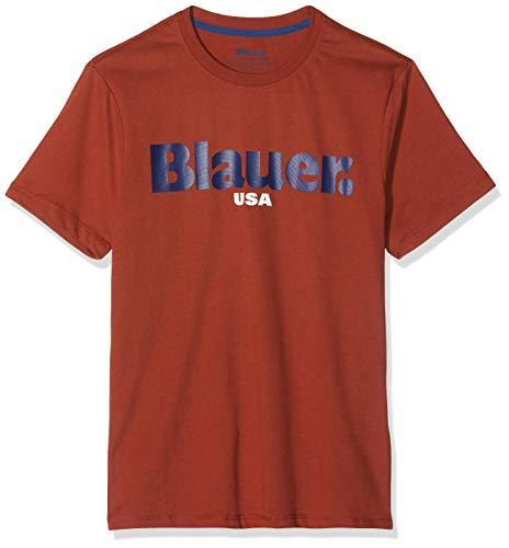 Blauer T-Shirt Manica Corta, Marrone (Marrone Ghianda 372), Medium (Taglia Produttore:M) Uomo