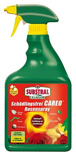 Substral Celaflor Schädlingsfrei Careo Rosenspray
