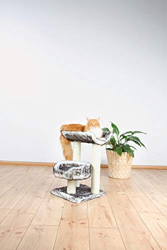 Trixie Isaba Kratzbaum mit 62 cm Höhe! - 4