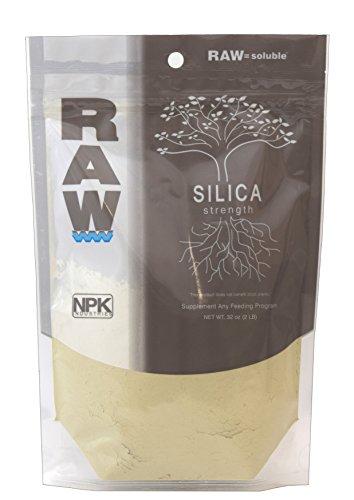RAW Silica - 2 lb
