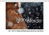 Islandpferde - Stolz und Stark durch Sommer und Winter (Wandkalender 2022 DIN A4 quer): Islandpferde, fotografiert in ihrer Heimat: 63° - 66° N. (Monatskalender, 14 Seiten )