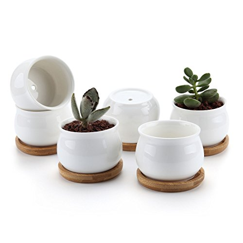 T4U 7CM Keramik Sukkulenten Töpfe Kaktus Pflanze Töpfe Mini Blumentöpfe mit Bambusuntersetzer Trommel Frome Weiß 6er Set