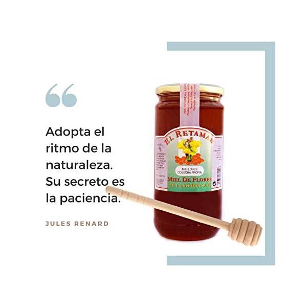 Miel de Abeja 100% Natural Hecha en España + Dispensador de Madera de