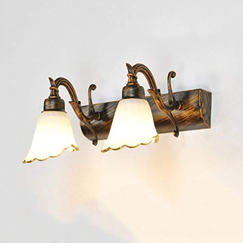WENYAO Die erntezeit Europischen Spiegel Frontleuchte LED Badezimmerspiegel Schrank Lichter Make-Up Kommode Lampe   E14 (Farbe    2)