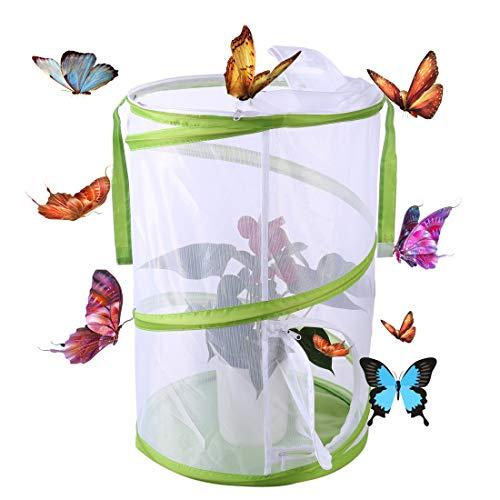 Haunen Schmetterlings- und Insektennetz, Schmetterlinge Züchten Netz Insekt Und Schmetterling Habitat Käfig Pop-up Schutz Käfig, 35×35×50cm