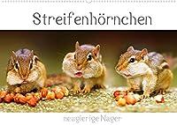 Streifenhoernchen - neugierige Nager (Wandkalender 2022 DIN A2 quer): Die Jaeger und Sammler unter den Nagetieren (Geburtstagskalender, 14 Seiten )