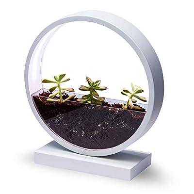 smart planter pot with feelings