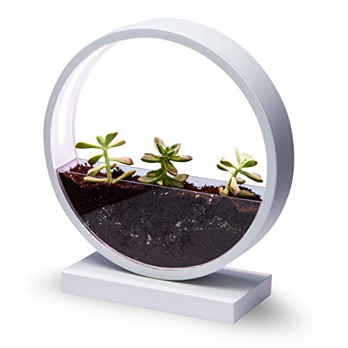 Make Lemonade Indoor LED Planter with Easy-Grow Accessories Kit, Brightness Settings, Ideal for Home and Office,Succulents, Flowers and Herbs