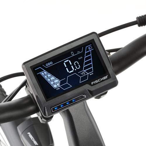 E-Trekkingbike FISCHER Herren EBike VIATOR Bild 2*