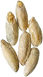Malt - Briess - Rye (50 lb Sack)