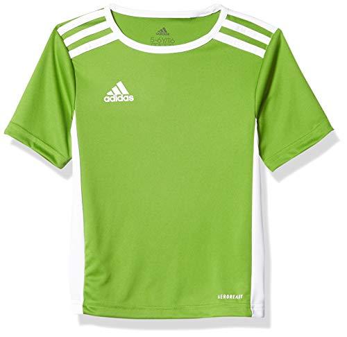 adidas Men's Entrada 18 AEROREADY Primegreen Regular Fit Soccer Short Sleeve Jersey, Rave Green/White, Large