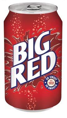 Big Red Soda Soft Drink, 12 Fl Oz (Pack of 24)