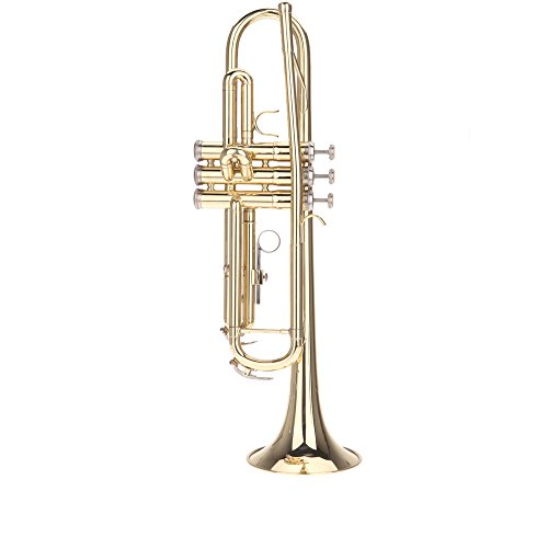 Andoer Wind Instruments - Best Reviews Tips