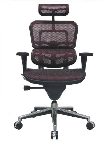 Ergohuman Eurotech Mesh Chair