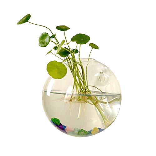 Bloem van het glas Vazen Glass Garden Planter Van De Bloem Vaas Terrarium Hydrocultuur Container Plant Landschap Fles Flower Klussen Desk Wedding Decor voor Verjaardag Wedding (Color : B)
