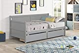 Daybed with Storage Drawers, Wooden Twin Day Bed with 2 Storage Drawers, Space-Saving Sofa Bed for Bedroom Living Room, No Box Spring Needed