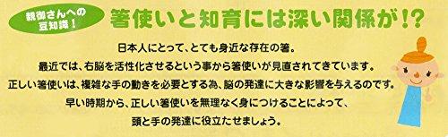 『イシダ 子供用矯正箸 三点支持箸 右利き用 14cm』のトップ画像