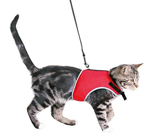 XCat Katzen-Garnitur mit Leine 1,20 Meter