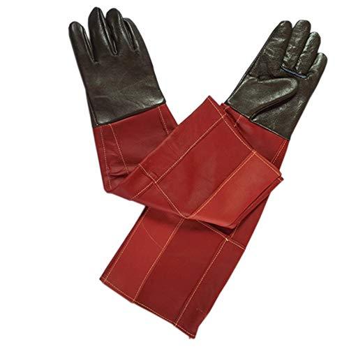 Anti-huisdier beet Handschoenen, Anti-beet Waterdichte Anti-steken Flexibele Anti-beet Handschoenen Hond, Kat Krab, Vogels Handling Falcon Handschoenen 60cm