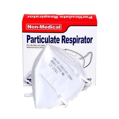 ISN mask2-30 pcs FFP2 Maschera Facciale di Protezione Respiratoria, Antipolvere, Imbustate singolarmente - Mascherina 5 Strati Traspiranti Certificata CE Confezione da 30 pezzi