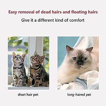Shapl Peigne de démêlage pour animaux domestiques | Outil de toilettage pour chiens et chats, élimine délicatement les sous-vêtements lâches, les tapis, les cheveux emmêlés (rouge)