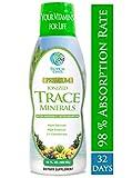 Tropical Oasis - Premium Ionized Plant Based Trace Minerals Liquid Formula- 74...
