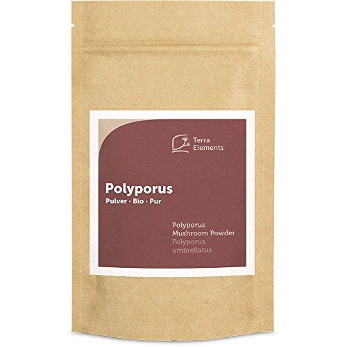 Terra Elements Bio Polyporus Pulver 100 g I Zhu Ling I Eichhase I 100% rein I Vegan I Rohkost