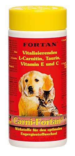 Fortan Carni-Fortan, 1er Pack (1 x 80 g)
