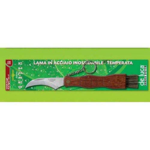 Null Couteau cogli Champignons Lame Acier Inoxydable malléable. Doté de Manche en Bois, centimètres et Brosse à Dents. avec chaîne et Bague Porte clés.