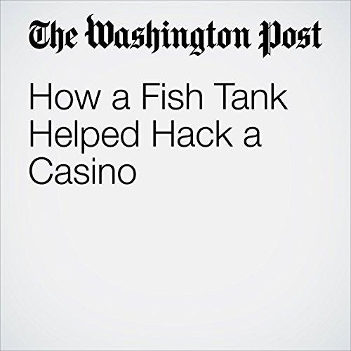 How a Fish Tank Helped Hack a Casino | Alex Schiffer