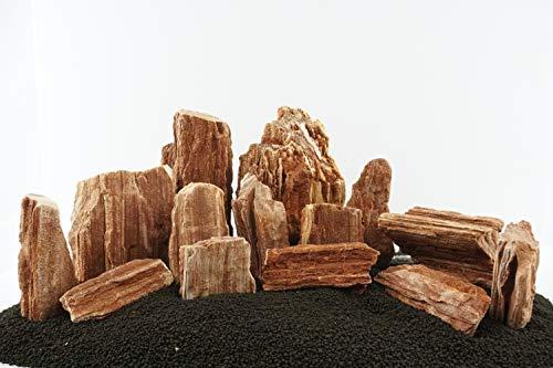Lifegard Aquatics Redwood Petrified Stone
