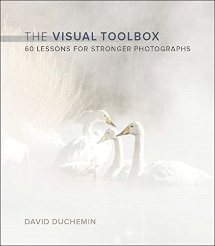 Visual Toolbox, The: 60 Lessons for Stronger Photographs (Voices That Matter) (English Edition)