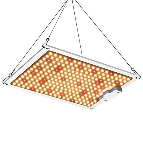 FHKBB 1000W 2000W 4000W 6000W Samsung LM301B LED Grow Light Quantum Board Interior Panel LED de Espectro Completo Luces de Cultivo para Plantas hidropónicas de Interior Lámpara de cultiv