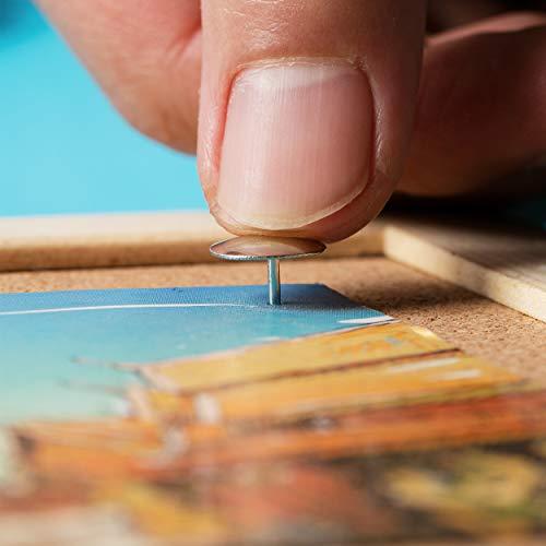 Mr. Pen Thumb Tack, Flat Push Pins, 500 Pack Photo #3
