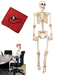 """💀Includes a 60"""" Tall Posable Limbs with Knees Life Size Skeleton with Pirate Bandanna and Eyepatch. 💀Durable for All-Weather Articulated Skeleton Plastic. Superior Quality. Deluxe Set. 💀Super Value Pack for Halloween Decoration. Perfect for Halloween..."""