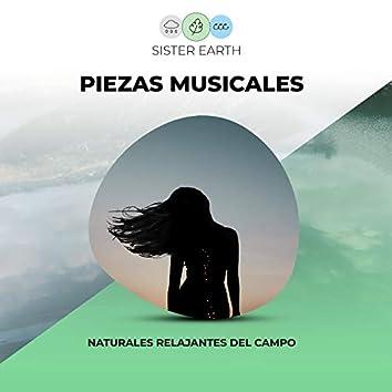 Piezas Musicales Naturales Relajantes del Campo