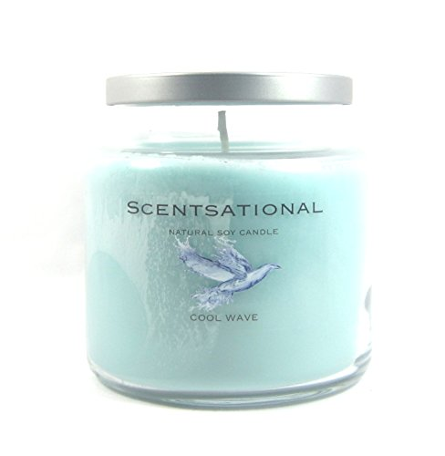 Scentsational Soaps & Candles Natural Soy Candle Cool Wave