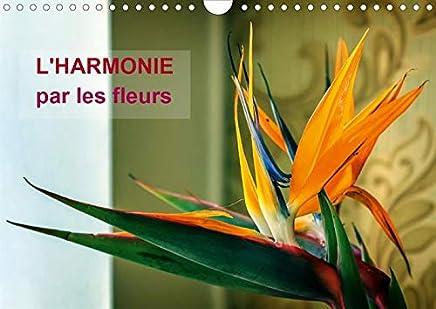 Lharmonie par les fleurs (Calendrier mural 2020 DIN A4 horizontal): Arrêtons-nous un instant pour admirer la beauté fragile et gracieuses des fleurs! (Calendrier mensuel, 14 Pages)