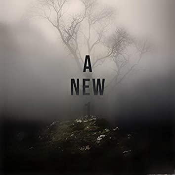 A New 1