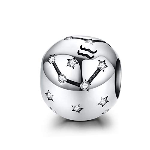 Scorpio Charms - Abalorio de plata de ley 925 con 12 horóscopos de constelación compatible con pulseras Pandora europeas