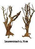 Lucky Reptile DSB-1 Savannenstrauch Circa 70 cm